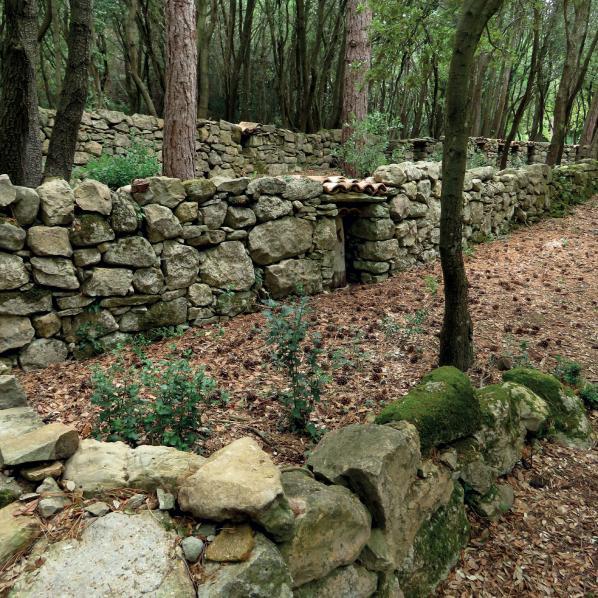 Le mur à abeilles Enricocangini