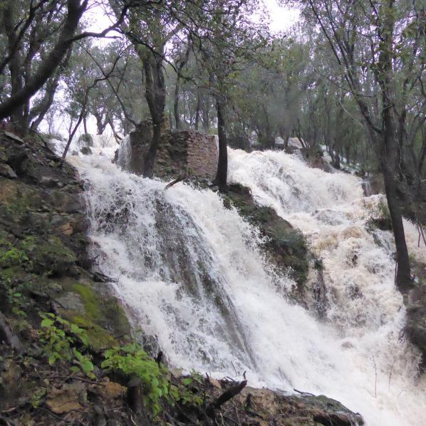 La cascade bassin eneau de l'espace naturel sensible Saint Rome