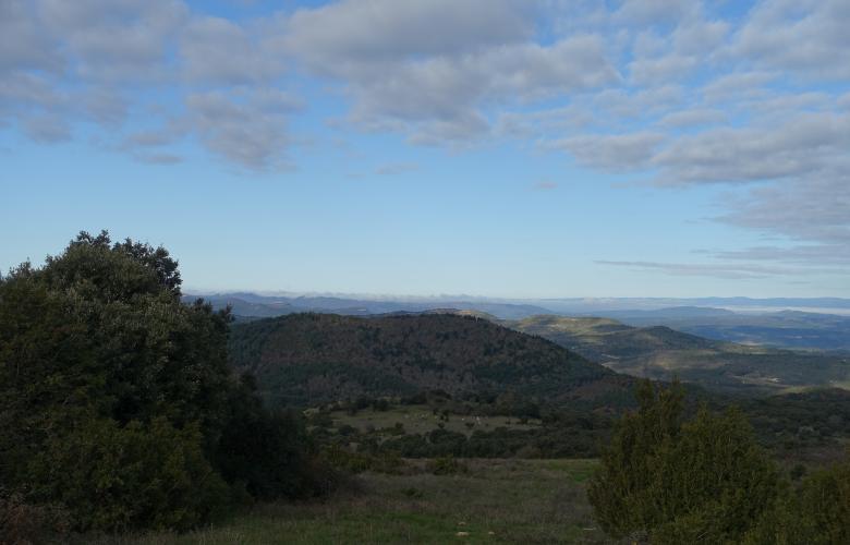 Plateau de Lacamp